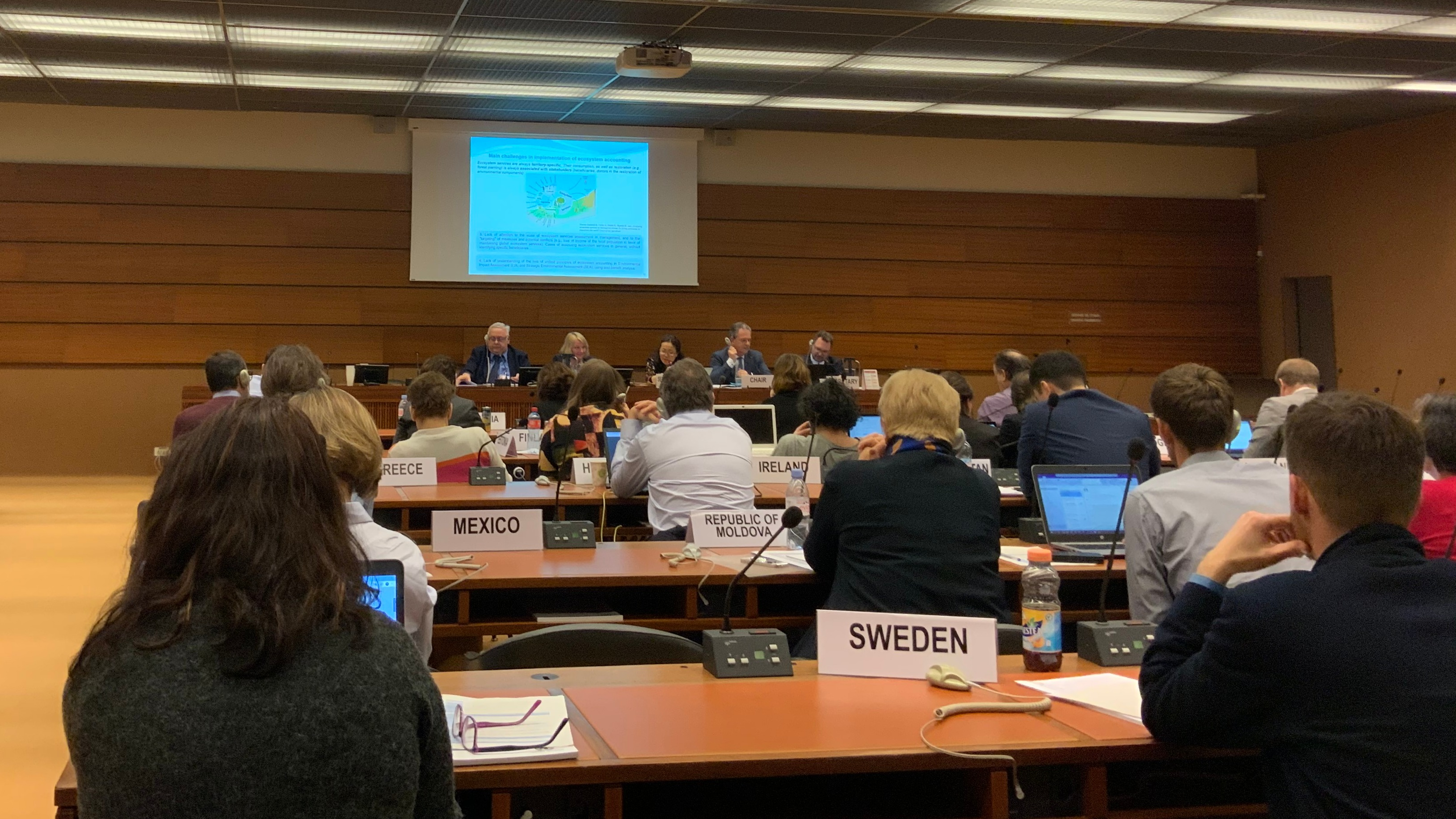 Joint OECD/UNECE Seminar on Implementation of SEEA took place in Geneva